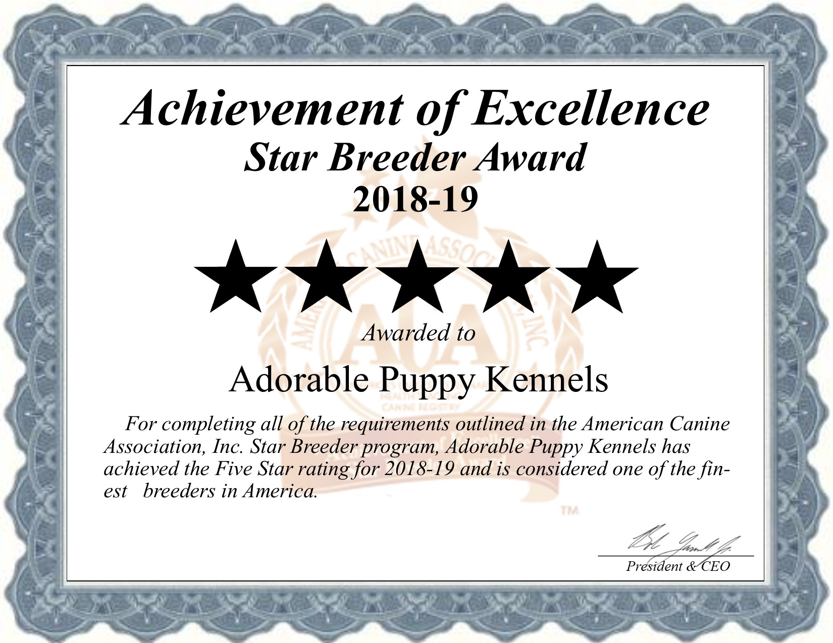 adorable, puppy, kennels, star, breeder, certificate, adorable-puppy, dog-breeder, kennel, reviews, customer, star, star-breeder, 5, five, USDA, rock, valley, ia, iowa  puppy, puppies, ACA, inspection, inspections, reports, mill, puppymill, mills;
