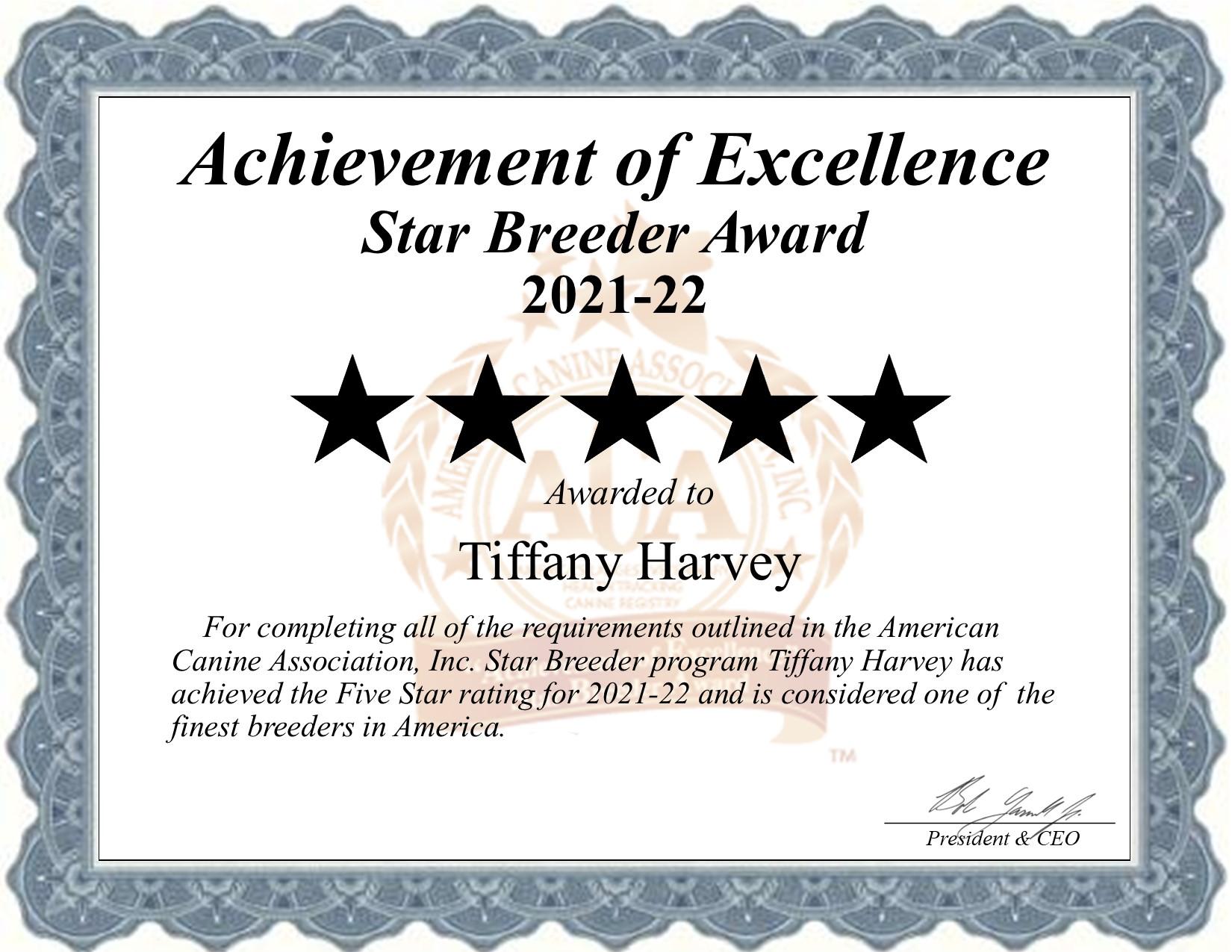 Tiffany, Harvey, dog, breeder, star, certificate, Tiffany-Harvey, Avery, TX, Texas, puppy, dog, kennels, mill, puppymill, usda, 5-star, aca, ica, registered, Mini Aussie, Dachshund